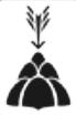 Bonson Logo